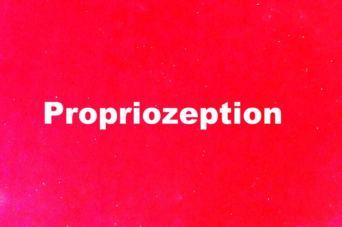 Propriozeption => PNF = ???